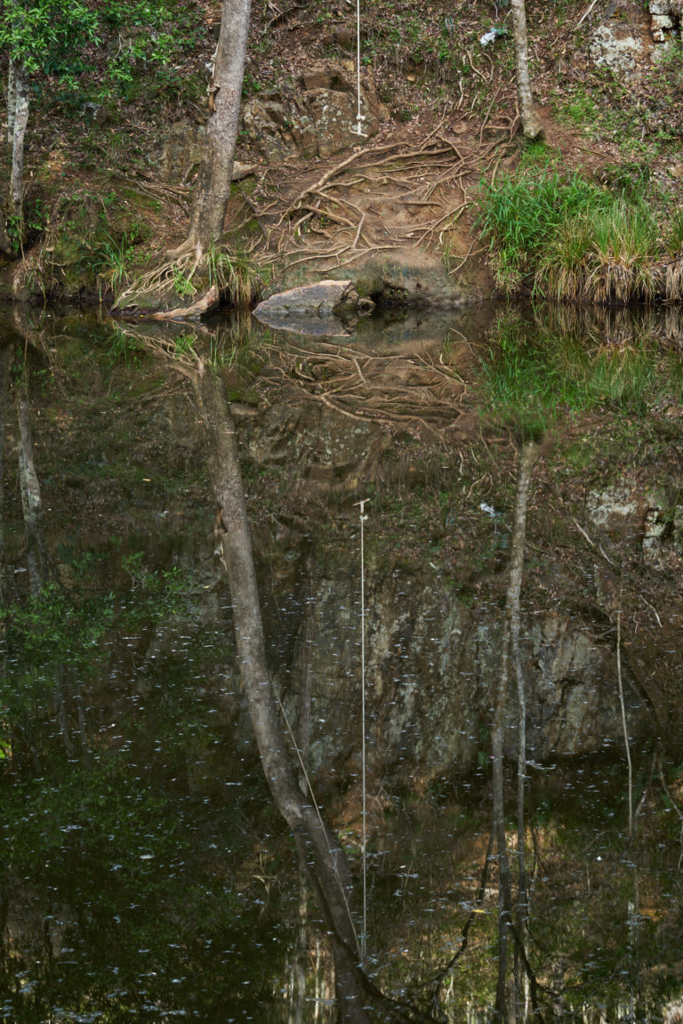 Reflections Neurum Creek