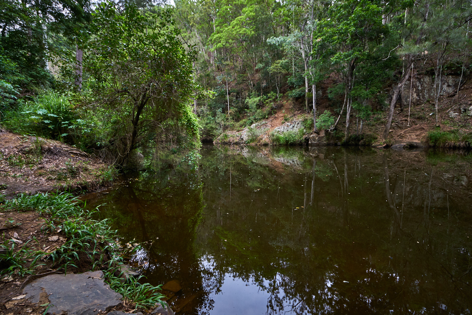 neurum creek